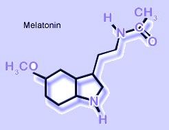 "Link Found Between Type 2 Diabetes and Melatonin--the ""Body Clock"" Hormone"